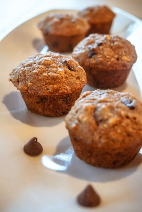 chocolate chip muffins with chocolate chips on white plate