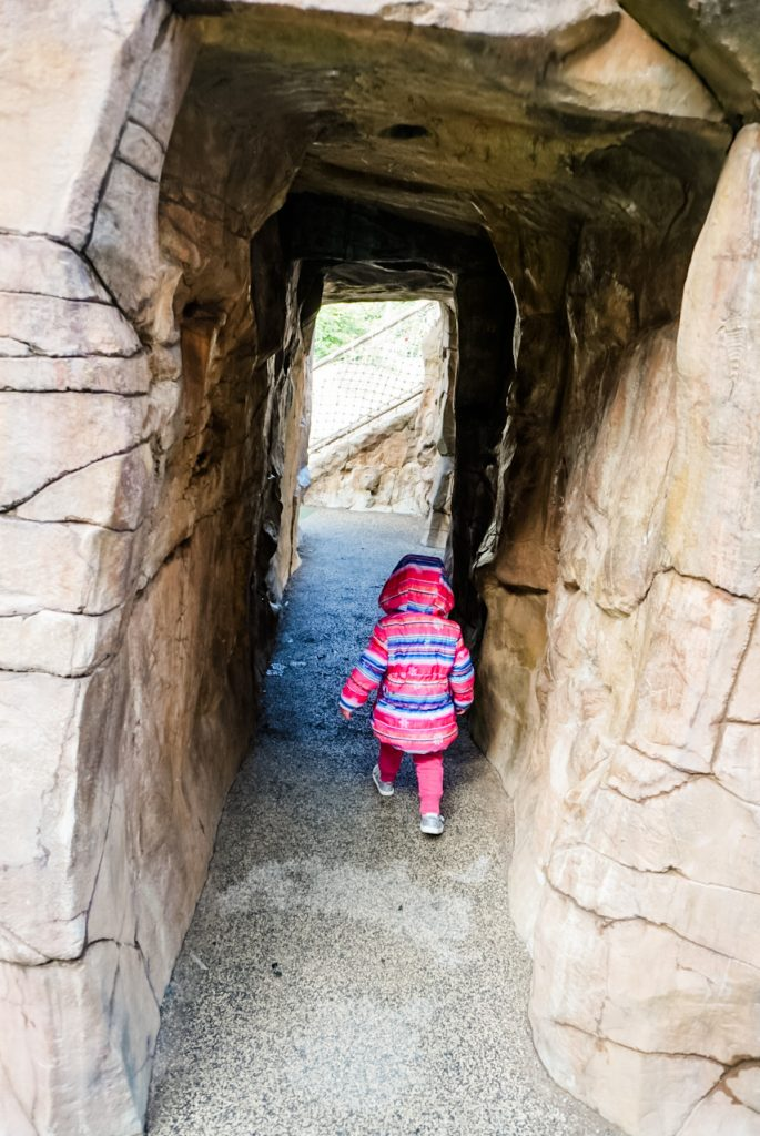 walking through the playground cave at teddy bear park