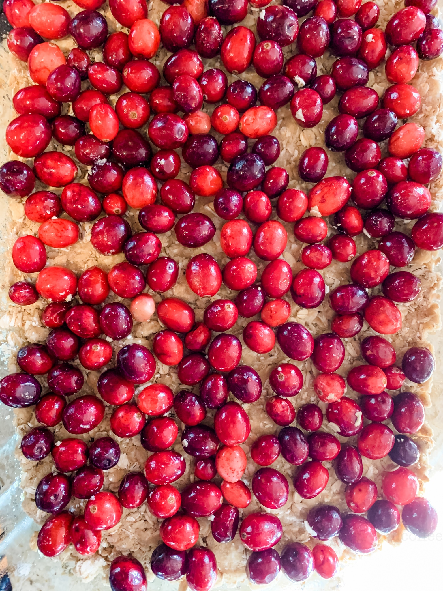 cranberries on top of oat mix
