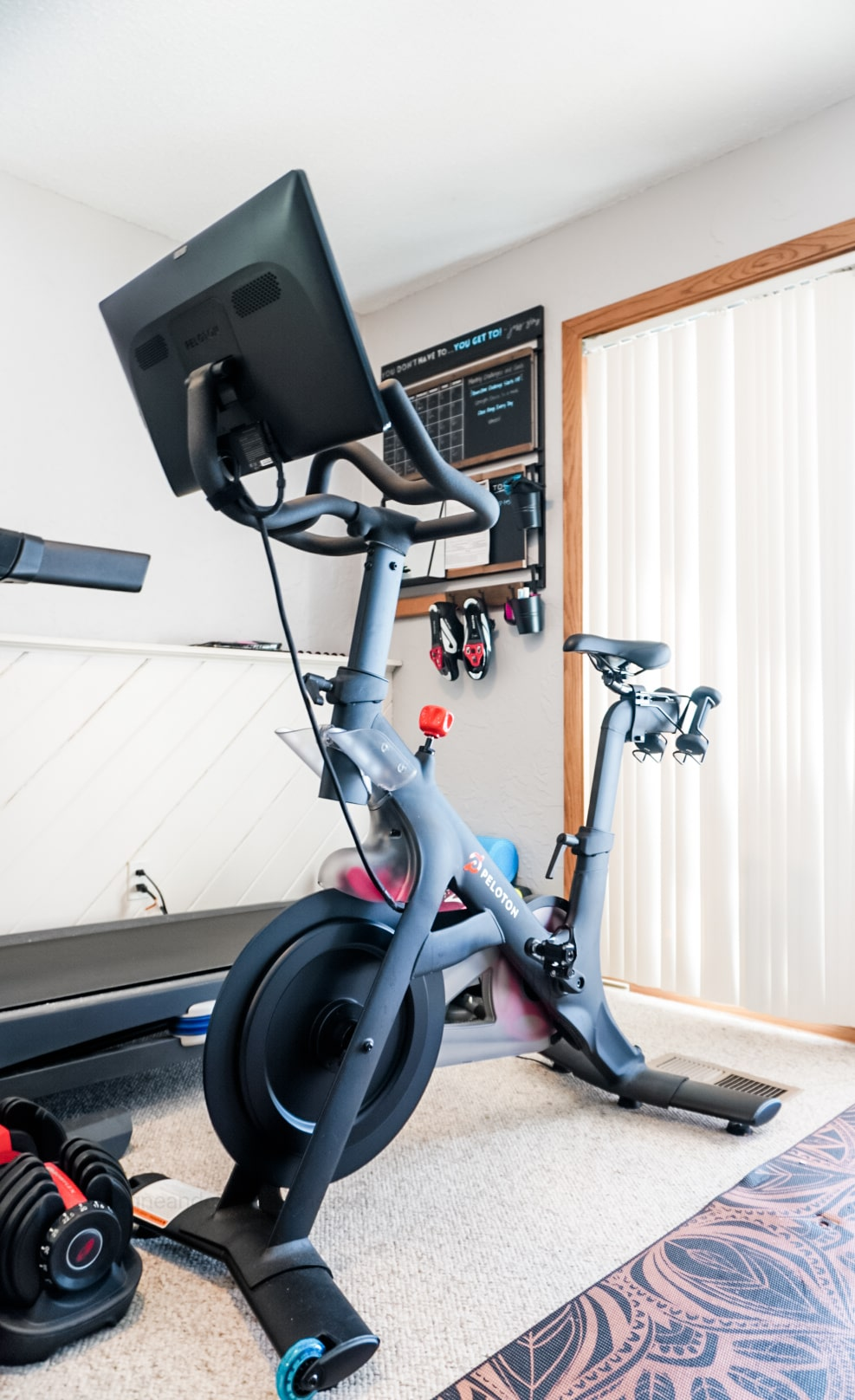 peloton bike in a home gym